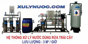 ht-nuoc-dung-trai-cay